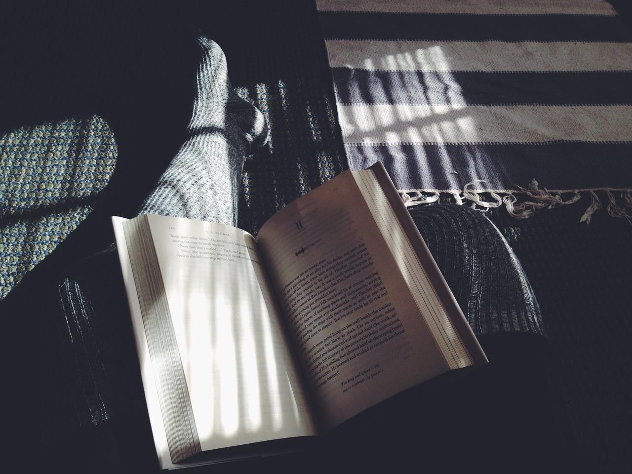 Wie Bücherregale das Wohnzimmer schmücken - Extasic.com